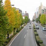 【板橋区】基本情報・シェアハウスの賃料相場を公開!